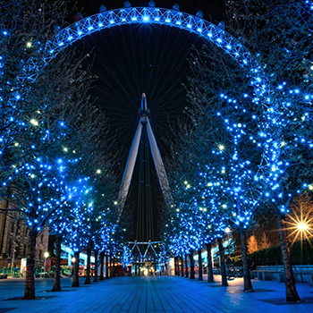 London Half Day Sightseeing Tour Service Luxury Minibus